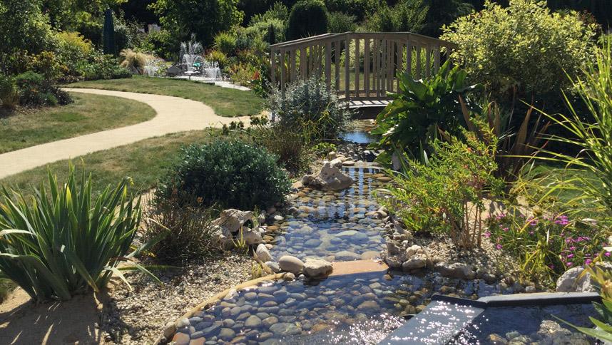 Bassin aquatique cr ation conception de bassin de for Bassin aquatique jardin
