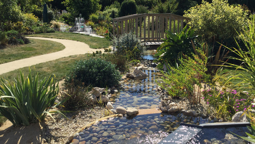 Emejing bassin de jardin grand volume photos for Bassin aquatique jardin