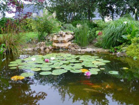 bassin et cascade avec grosse pierre