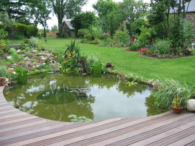 Bassin et terrasse